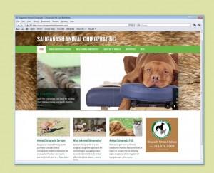 Animal Chiropractic Center website design