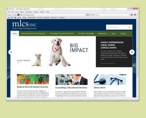 Business Consultants web site